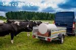 Zbiornik beczka do transportu mleka