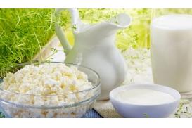 artykuł mleczarstwo