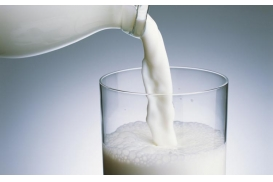 mleczarnie portal